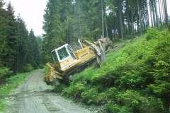 Nordhang/Radspitze - Arbeitseinsätze 2009